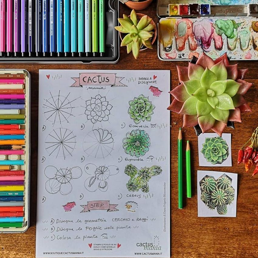 Impara a disegnare i cactus