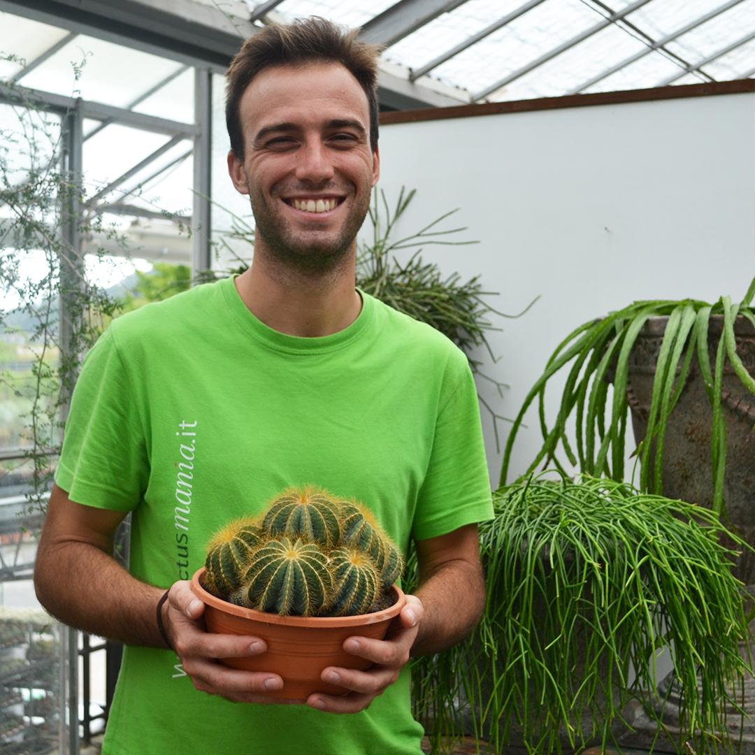notocactus magnificus vaso 20-3