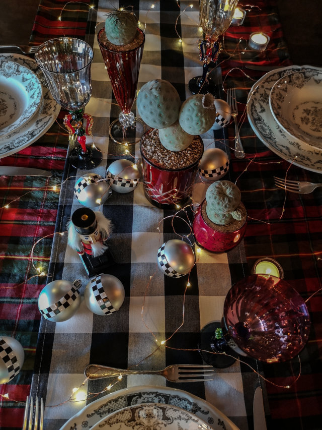 Centrotavola di Natale con Tephrocactus