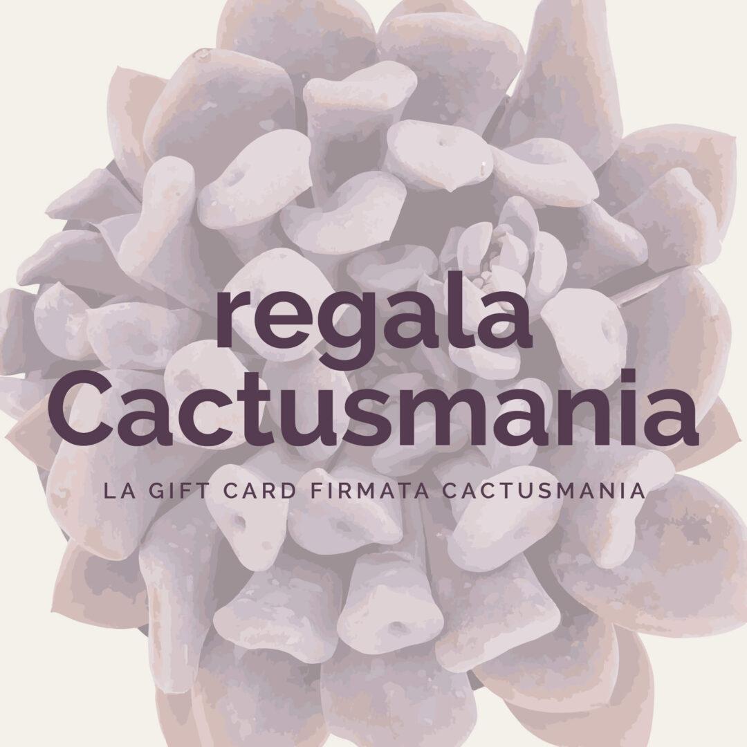 Gift card Cactusmania